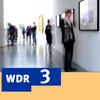 WDR3_mosaik100