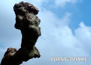 Borsig-Blinks. Foto: Rolf Dennemann