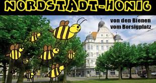 nordstadthonig_web